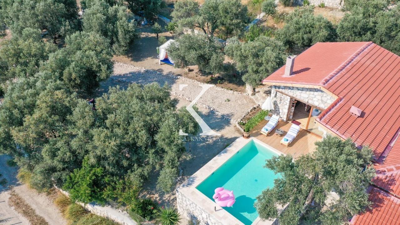 Villa Shavi